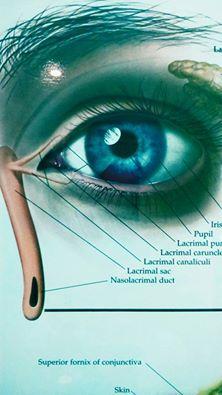 imagen de ojo