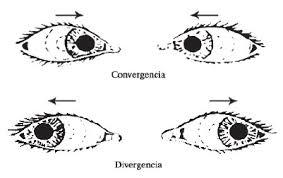 convergencia vs divergencia